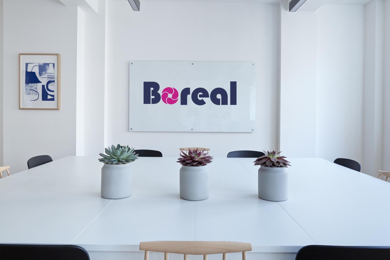 boreal-